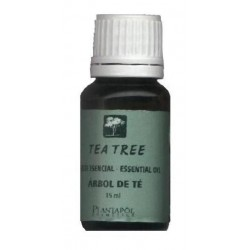 TEA TREE - ARBRE DEL TE. OLI ESSENCIAL. PLANTAPOL. 15 ml.