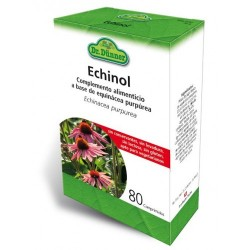 ECHINOL DR. DÜNNER 80 comprimidos
