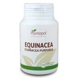 EQUINACEA PLANTAPOL 100 comprimidos